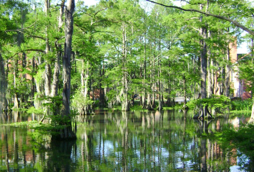 Hard Money Lenders Mississippi